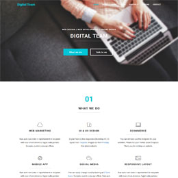 Digital Team HTML5 template